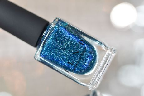 NEWS ILNP HOLIDAY 2017 5