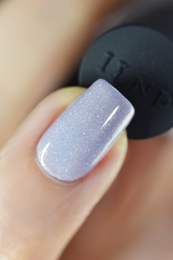 ILNP SAVE THE DATE 6