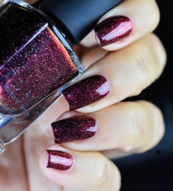 ILNP CARRIE 7
