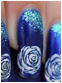 rosesbleues_3