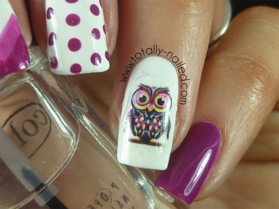 Owl Decals