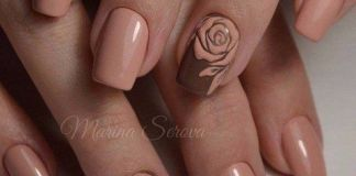 Nude Rose Nail Accent On Brown Manicure