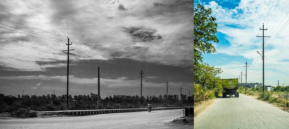 Noida streets and foliage during a walk. Photography by professional Indian lifestyle photographer Naina Redhu of Naina.co