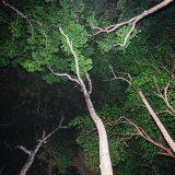 Andaman Islands, #EyesForTravel, Travel Photography, Naina.co Luxury & Lifestyle, Photographer Storyteller, Blogger.