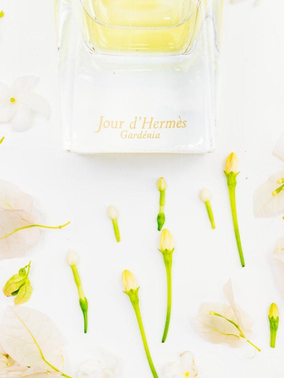 Naina.co, Visual Storyteller, Luxury Brands, Naina Redhu, Professional Photographer, Experience Collector, Luxury Photographer, Luxury Blogger, Lifestyle, Visual Storyteller for Luxury Brands, Jour d'Hermes, Gardenia Perfum, Jean-Claude Ellena, Parfumier, Fresh, Flowery, Fragrance, Perfume, Scent, #FragranceOfTheMonth, FragranceOfTheMonth, Fragrance Of The Month