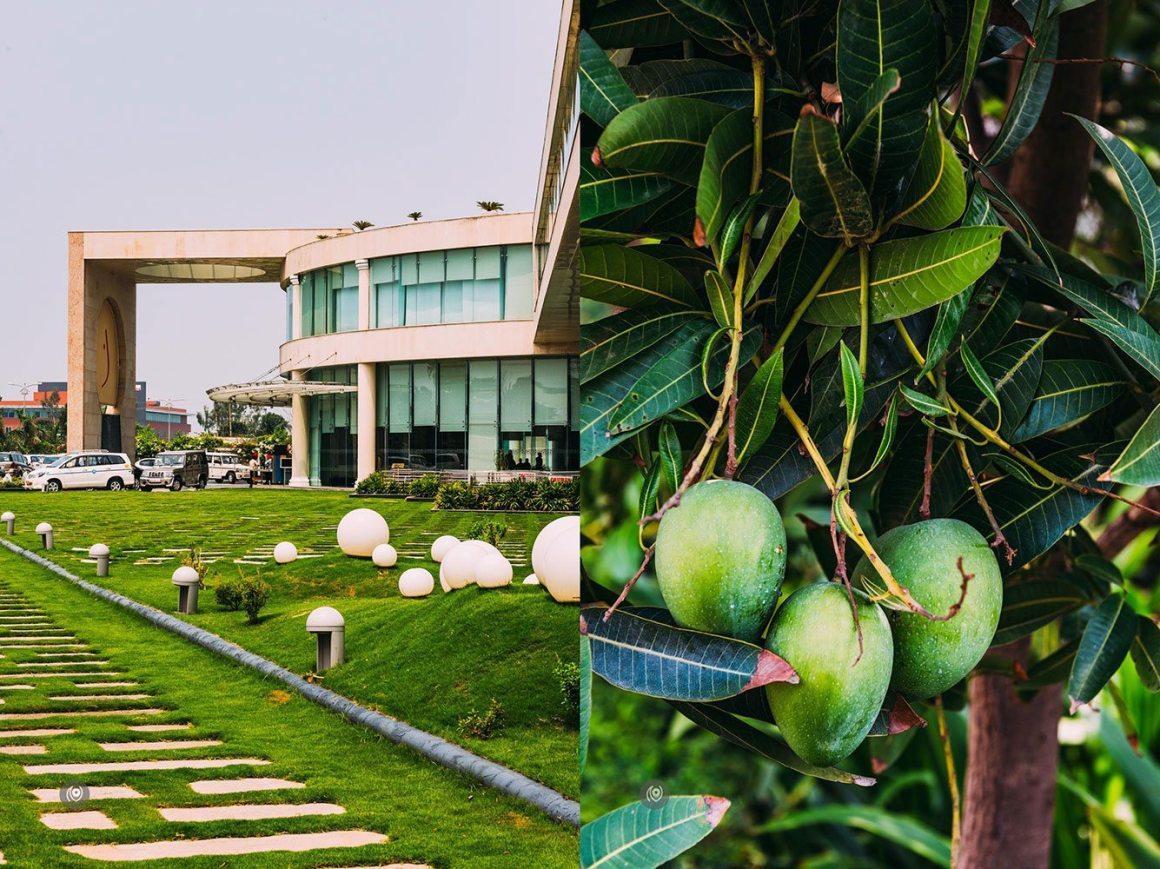 Naina.co-Luxury-Lifestyle-Photographer-Blogger-REDHUxTheLalit-Travel-EyesForDestinations-Chandigarh-12a