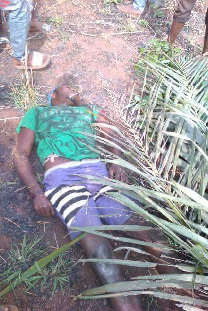 Armed hoodlums have attacked the house of a fulani herdsman in Ankpa, Kogi State, where they killed 28 cows and made away with seven others. The News Agency of Nigeria gathered in Lokoja that the armed hoodlums invaded the herdsman house located at Ogodo area of Ankpa on July 30 and Aug. 16 to carry […]