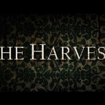 the harvest 2013