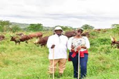 museveni daughter grazing