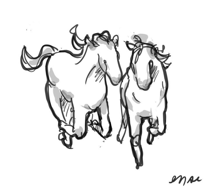 horse-sketch-1