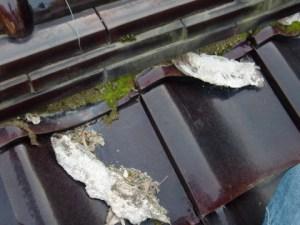 瓦屋根の漆喰