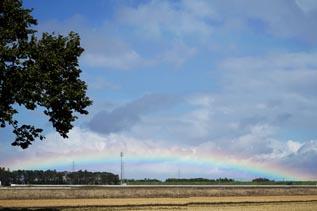現場からの帰り道、きれいな虹が架かってました