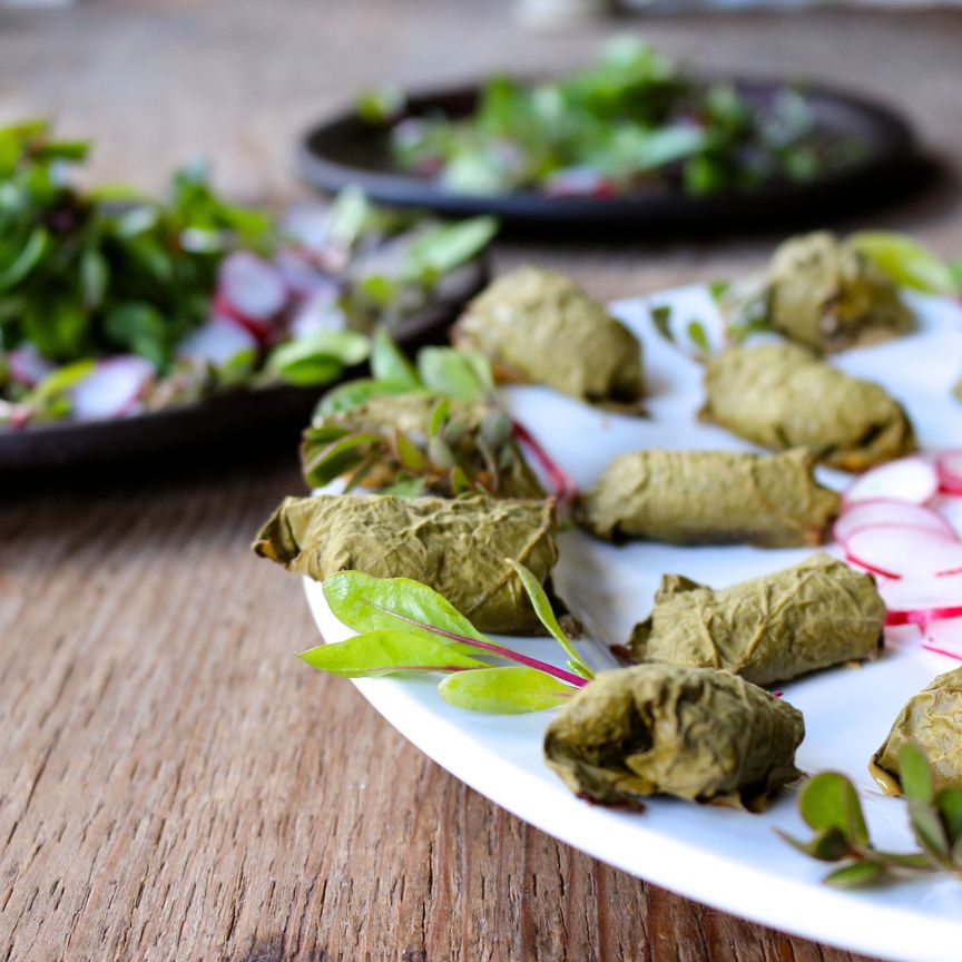 Fresh herb and garlic beef stuffed grape leaves