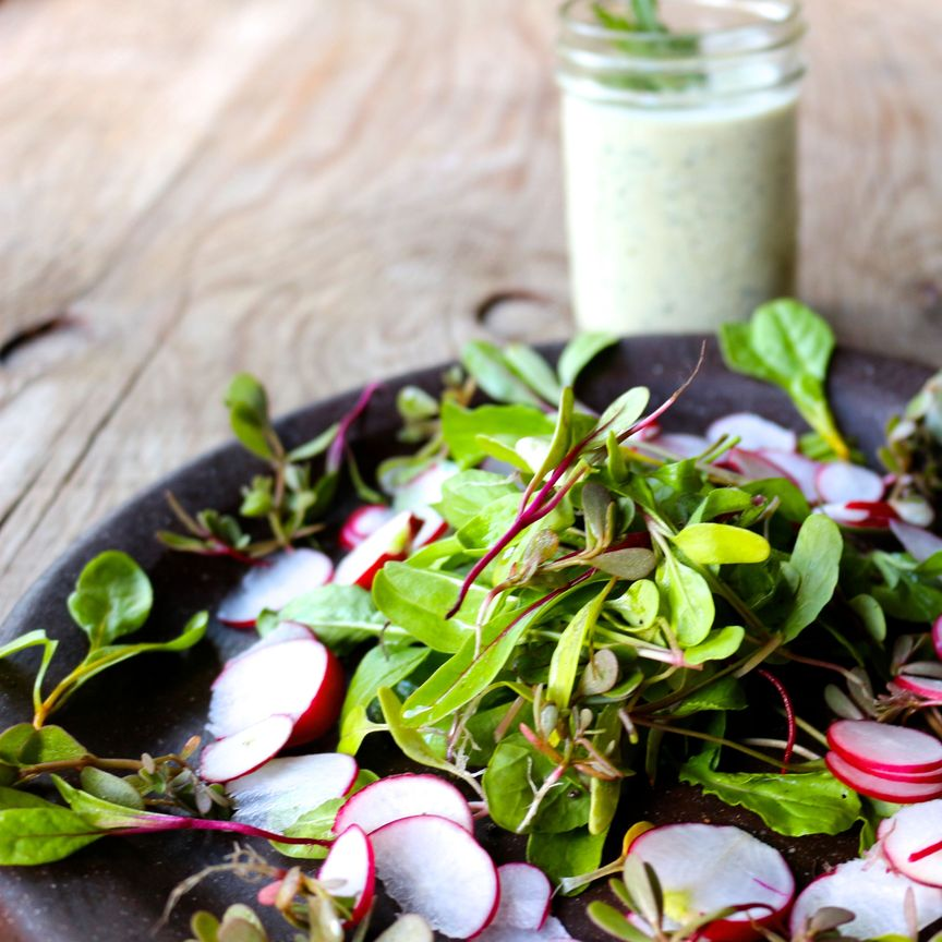 Delicate Spring Greens, Purslane and Mint with a Tahini Mint Dressing