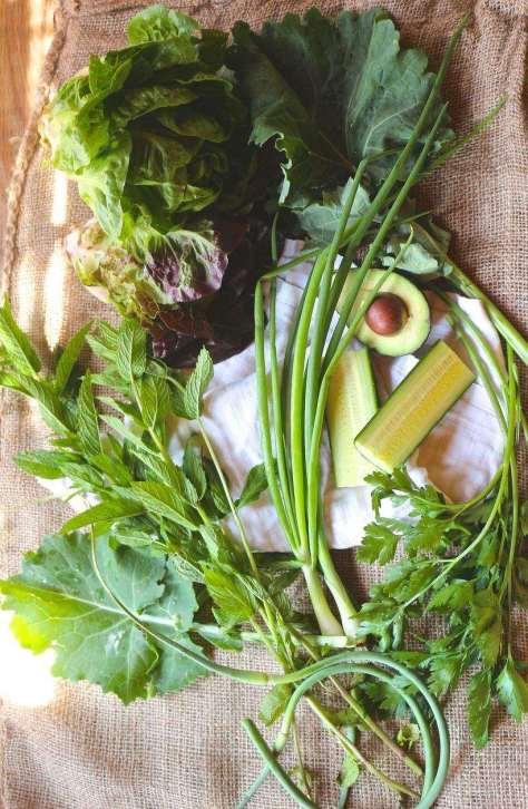 Green Goddess Vitamineral Super Soup
