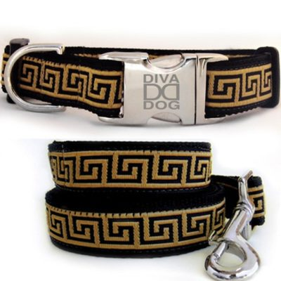 Ceasar Collar & Leash Set
