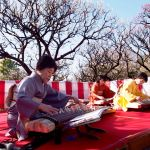 Long Japanese zither having 13 strings
