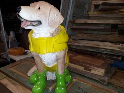 Hond-in-regenpak-2