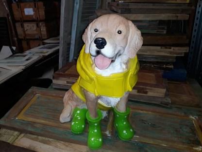 Hond-in-regenpak-1