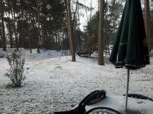 Schneefall im Park