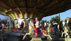 pferde-carrousel
