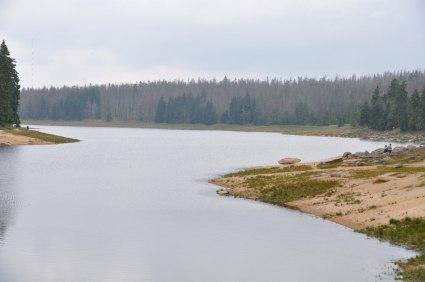 Damm Oderteich