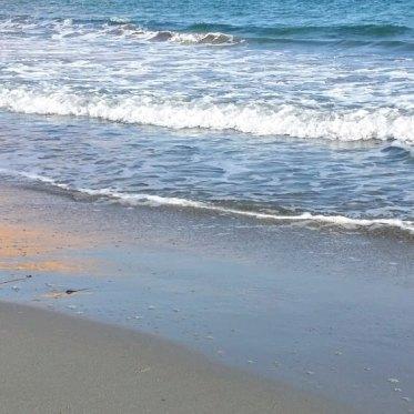 Im Winter am Meer