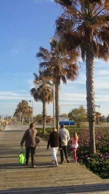 Kalter Wind unter Palmen