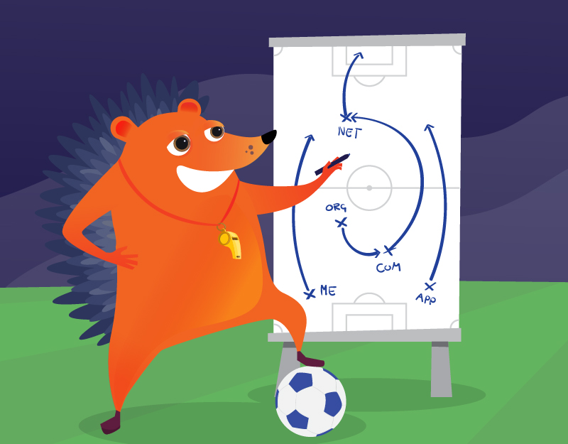 Hedgehog demonstrating TLD purchasing strategy like football