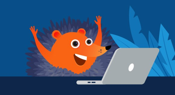 hedgehog excited about his blog