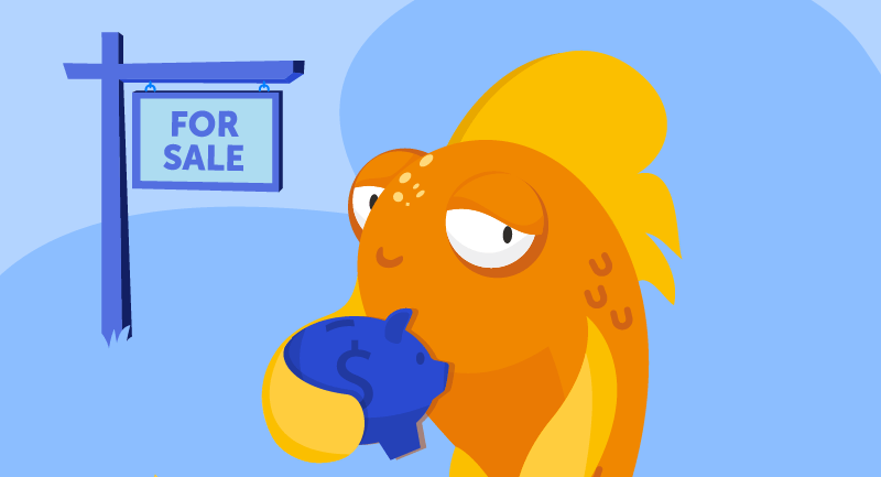 fish with piggy bank and for sale sign