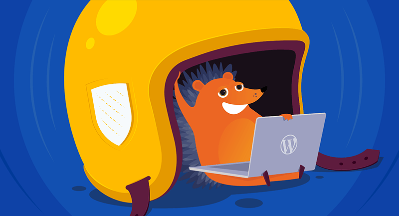 Hero image of A smart guy's guide to securing WordPress