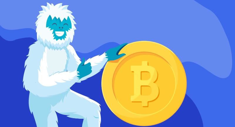 Hero article of Integrating Bitcoin payments