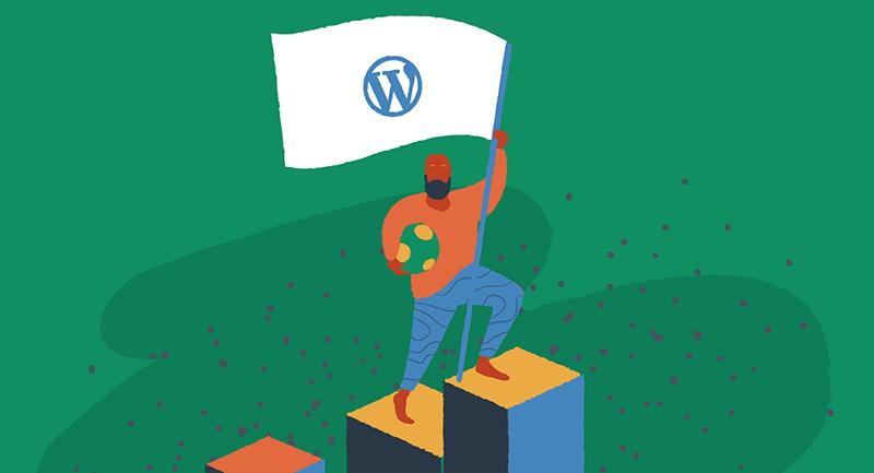 Man with a WordPress flag