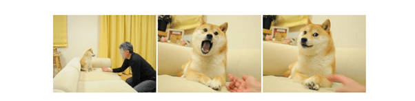 [News] Dogecoin crypto hits the bigtime