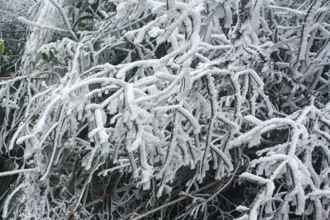 Houphan-NamEt-PhouLouey-cold-january-2016-8
