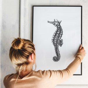 Woman Hanging a Framed Print of a Seahorse