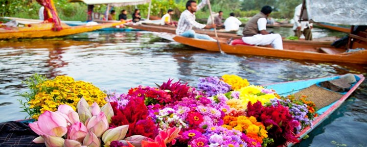 kashmir Luxury Tour Packages