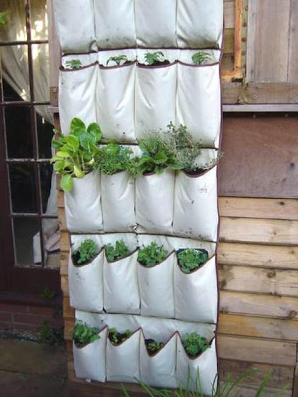Hanging Garden - Shoe