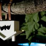 Pastatykite Šikšnosparnio Namą