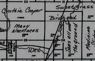 Chief Plenty Coups - Landowner Map