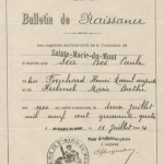 Birth Certificate of Baby Named Sea Bee