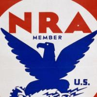 nira, legislation, baby name, 1930s,