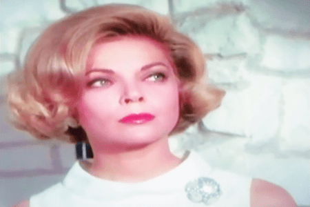 """The character Cinnamon Carter from the TV series """"Mission: Impossible"""" (1966-1973)."""