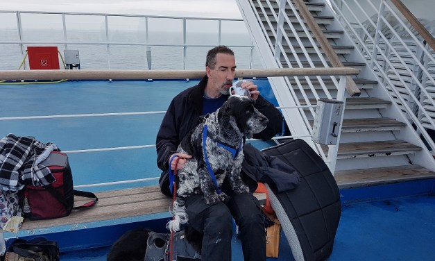 Brittany Ferries Pet Friendly Travel