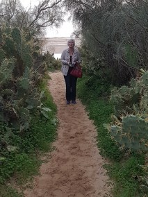 Nancy amongst cacti