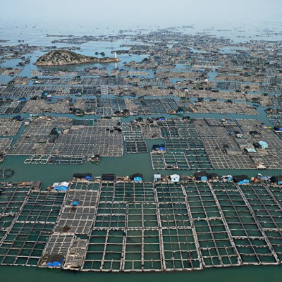 Edward Burtynsky: Marine Aquaculture #1, 2012 Source