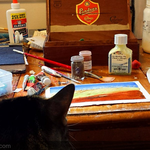 cat looking at watercolour painting  The cat watching paint dry with me. There's a lot of waiting with watercolour.