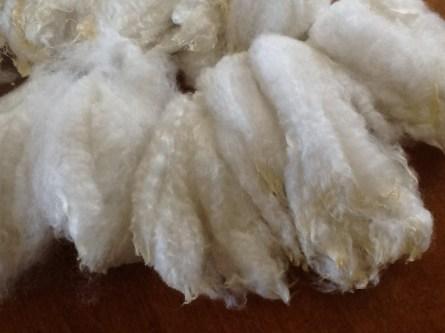 NewZealand Merino Wool (30)
