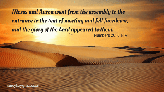 Moses and Aaron went from the assembly to the entrance to the tent of meeting and fell facedown and the glory of the Lord appeared to them. & Moses and Aaron went from the assembly to the entrance to the tent ...